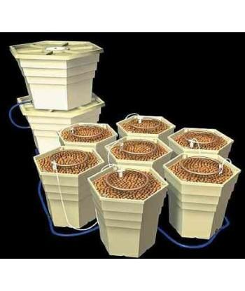 GH Power Grower - 8 Packs