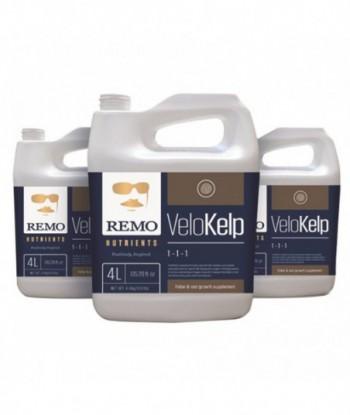 Remo's VeloKelp