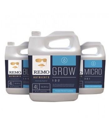 Remo's Micro